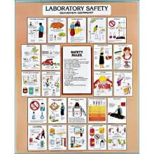 Laboratory Safety Chart, C2710 Denoyer Geppert