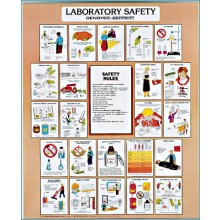 Laboratory Safety Chart - Set of 3, C2712 Denoyer Geppert