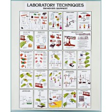 Laboratory Techniques Chart, C2810 Denoyer Geppert