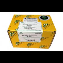 D4026 Zyppy™ Plasmid Midiprep Kit (50 Preps)